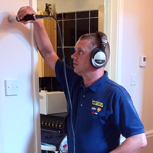 Central Heating Leak Detection Bordon